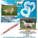 Cachorros de Golden Retriever, Garantías de salud y carácter.